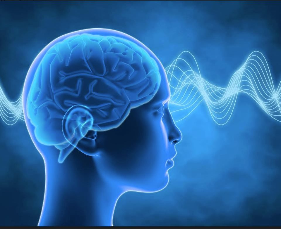 Az agyhullámok viselkedése mély meditációban − Swami Niranjanananda Saraswati szerint